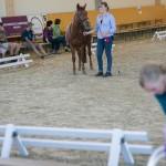 superpferd-20120909-137