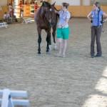 superpferd-20120909-145