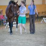 superpferd-20120909-148