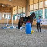 superpferd-20120909-200