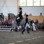 superpferd-20120909-274