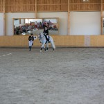 superpferd-20120909-284
