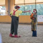 superpferd-20120909-401